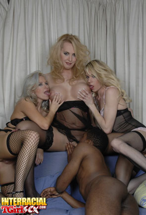 t interracial britishtgirls 01 British Tgirl Orgy On Interracial Tgirl Sex!