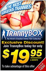 2011-tranny-box-bt.jpg