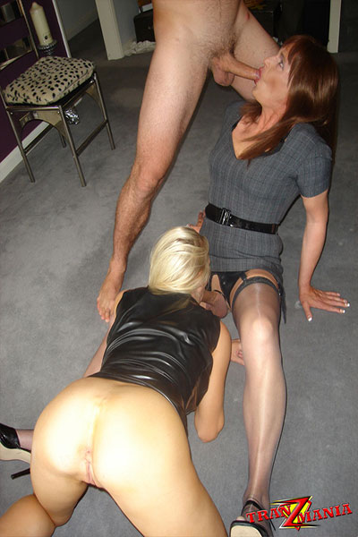 t british tgirl secretary 03 Coupling With Classy British Tgirl On TranzMania!