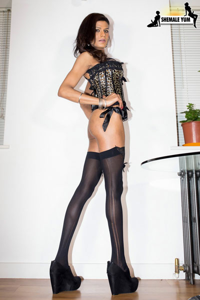 t british tgirls exotica kareena 02 British Tgirl Exotica Kareenas Long Legs On Shemale Yum!